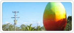 Big Mango - mangue géante en Australie